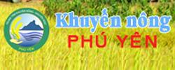 P3: Khuyến Nông Phú Yên