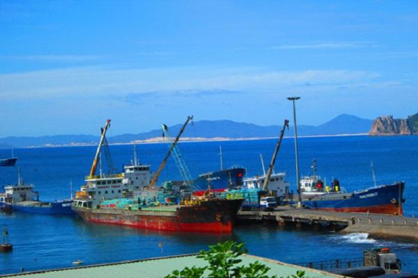 Tàu nhập hàng ở cảng Vũng Rô