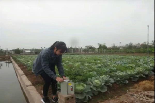 Sản phẩm được sử dụng hiệu quả tại vườn rau của các hộ dân xã Quốc Tuấn