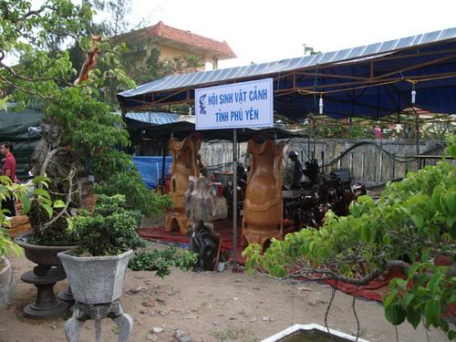 Hội sinh vật cảnh triển lãm tại Hội chợ