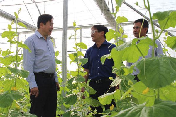 Ứng dụng công nghệ cao, nâng sức cạnh tranh cho ngành Nông nghiệp