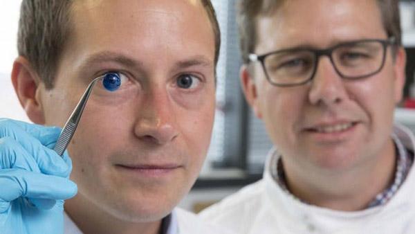 Tiến sĩ Steve Swioklo (trái) và giáo sư Che Connon với giác mạc được in 3D - Nguồn: Đại học Newcastle
