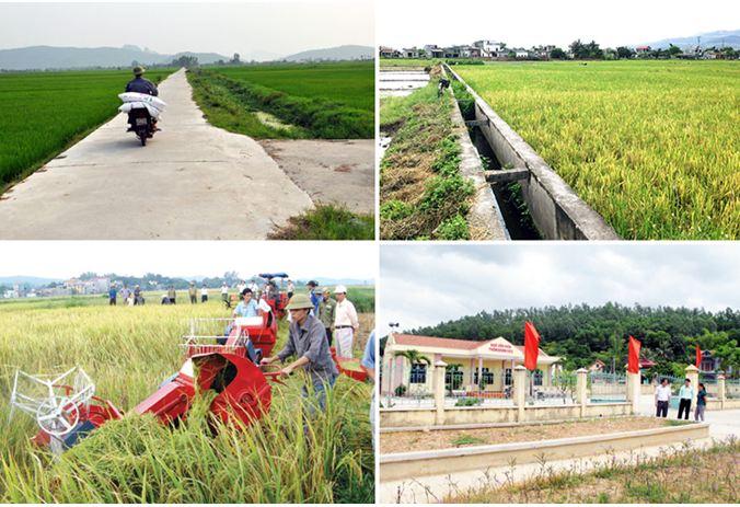 Tỉnh Phú Yên tập trung nguồn lực đầu tư cho nông nghiệp, nông thôn