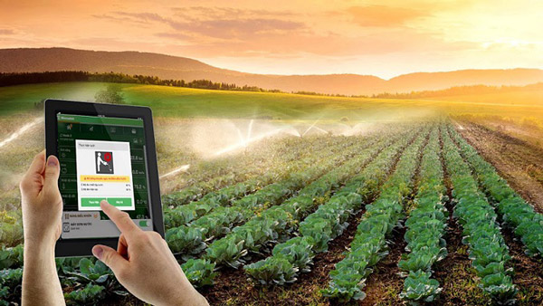 Ứng dụng IoT phục vụ tưới tiêu trong nông nghiệp