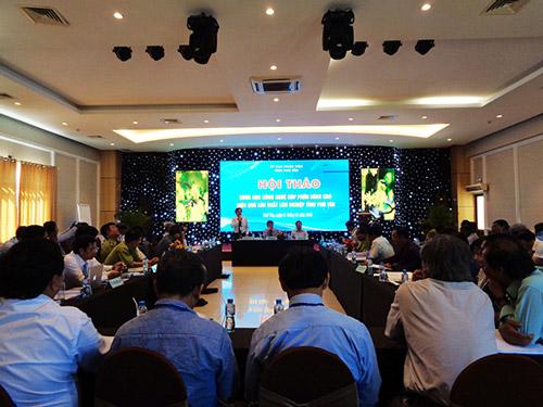 Hội thảo khoa học công nghệ góp phần nâng cao hiệu quả sản xuất lâm nghiệp tỉnh Phú Yên