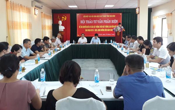 Thái Bình: Phản biện Đề án chuyển đổi cơ cấu cây trồng