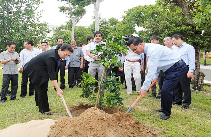 Phối hợp thực hiện Chương trình Quỹ 1 triệu cây xanh cho Việt Nam tại Phú Yên