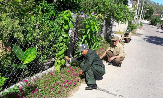 Tổ tự quản về BVMT của Hội CCB xã Bình Kiến (TP Tuy Hòa) chăm sóc đường hoa. Ảnh: HÀ ANH