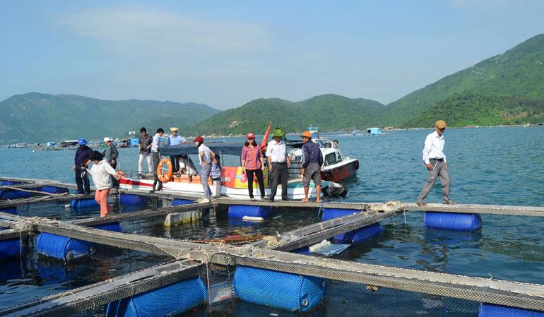 Sắp xếp lại các vùng nuôi thủy sản: Cần sự vào cuộc của cả hệ thống chính trị