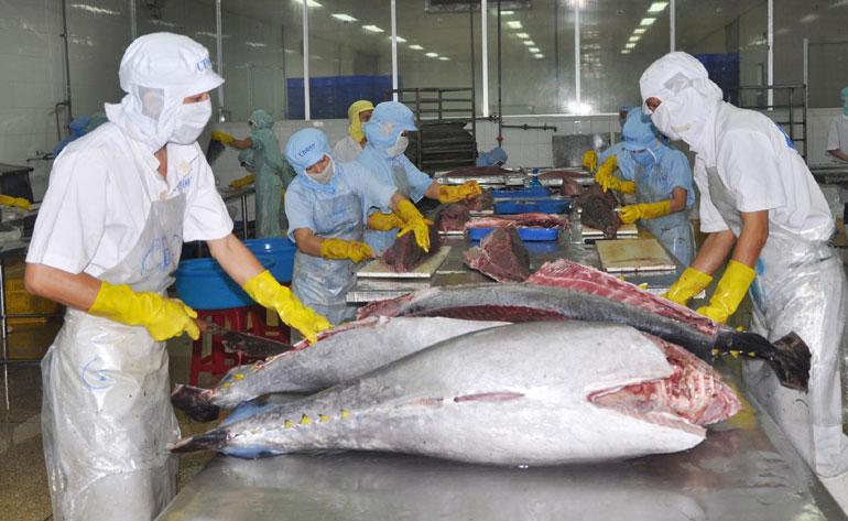 Bộ Chính trị yêu cầu cả hệ thống chính trị tiếp tục đẩy mạnh công tác phòng, chống dịch COVID-19, thúc đẩy phát triển kinh tế. Trong ảnh: Chế biến thủy sản xuất khẩu tại một doanh nghiệp ở Ph