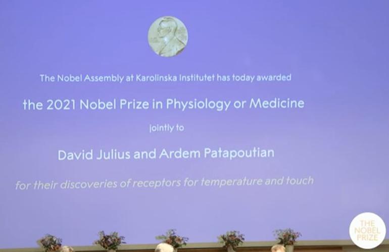 Công bố giải Nobel Y học 2021. Nguồn: Twitter
